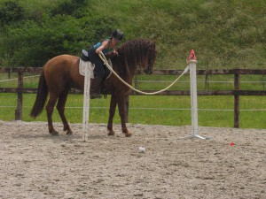 Caroline Goossens & Gayo V, Capg-Horses