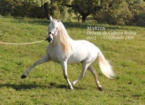 Martin, Dehesa de Cabeza Rubia