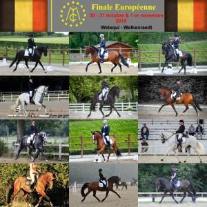 MCI Finale Europeenne 2015