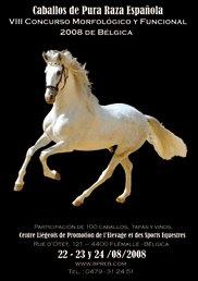 CM Flémalle 2008 affiche