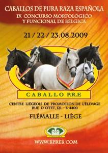 CM Flémalle 2009 affiche