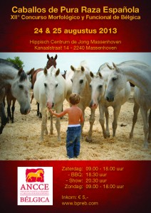 CM Massenhoven 2013 affiche