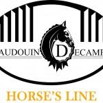 Horse's Line