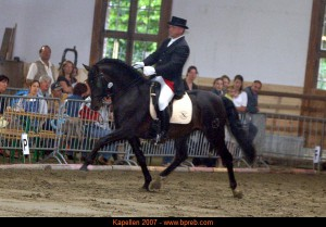 Luis-Seni, Antwerp Andalusians, CM Kapellen 2007