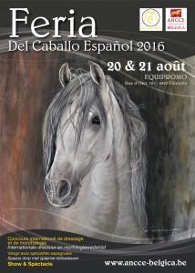 CM Flémalle 2016 affiche