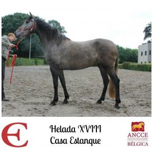 Helada XVIII - Casa Estanque met logo 2