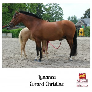 Lunanca - Evrard Christine met logo 2