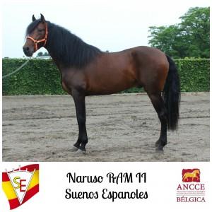 Naruso RAM II - Suenos Espanoles met logo 2