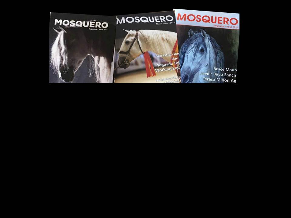 Mosquero