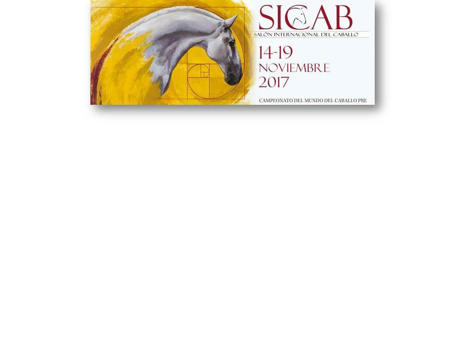 SICAB-2017-1