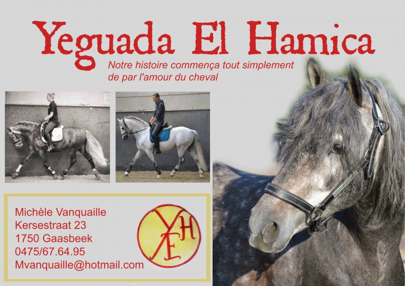 Yeguada El Hamica
