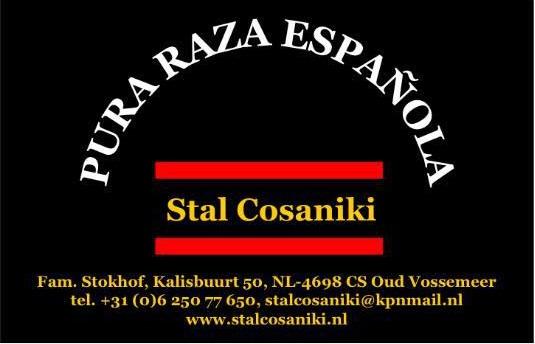 Stal Cosaniki