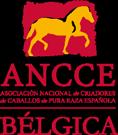 ANCCE-Bélgica Logo